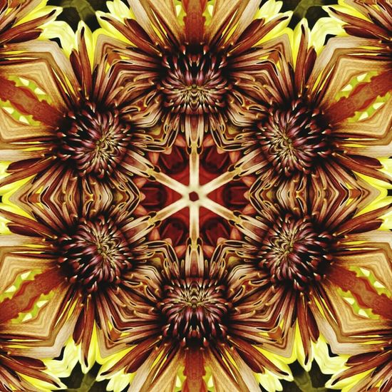 Artistic Expression Artistic Photo Artsy Photography Feeling Artsy Kaleidoscope Flower Artistic Edit ArtInMyLife Artistic Artistic Eye Artistic Composition