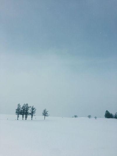 Japan Winter