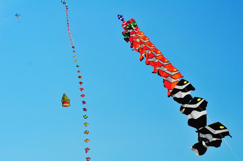 Kite Flying Kite Festival Traditional Culture Traditional Kite Low Angle View Fish Flying Layangan Kite EyeEmNewHere EyeEm Best Shots Eye4photography  EyeEm Selects EyeEmBestPics Clear Sky Blue Multi Colored Celebration Sky Formation Flying