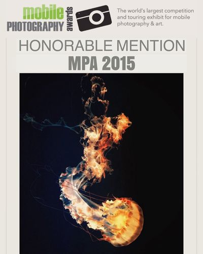 I'm honored have one of my photos receive an honorable mention in the 2015 Mobile Photography Awards. Mobilephotography Monterey Bay Aquarium Mobile Photography Awards Jellyfish Ocean Jim Perdue Tranquility EyeEm Nature Lover Taking Photos Atmospheric Mood