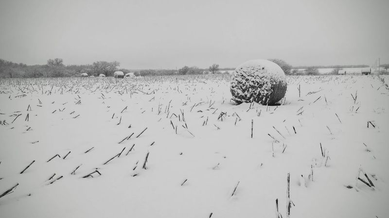 Visual Journal December 4, 2016 Western, Nebraska (Fujifilm Xt1,Fuji 10-24/f4 OIS) edited with Google Photos. America Camera Work Eye For Photography EyeEm Best Edits EyeEm Best Shots Haybales  Landscape_Collection MidWest Minimalism My Neighborhood Photo Diary Remote Rural America Rural Scene Seasons Selects Small Town America Small Town Stories Snow Covered Storytelling Taking Photos Visual Journal Winter Wonderland Winterscapes Wintertime