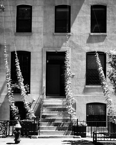 NYC Photography My City NYC Street Photography NYC Parks Fox5ny Manhattan NYC Sunshine NYC Black And White. Contrast History Window Architecture Building Exterior Built Structure The Architect - 2018 EyeEm Awards