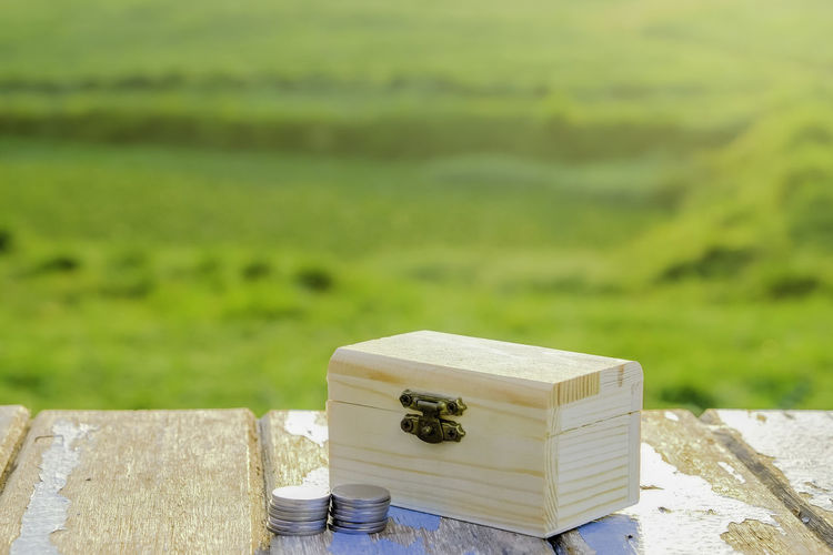 Box with coins on wooen table against green background Animal Themes APIculture Beehive Close-up Day Field Focus On Foreground Grass Green Color Landscape Nature No People Outdoors Wood - Material