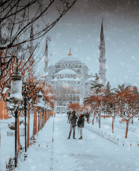 View of snow covered trees in city