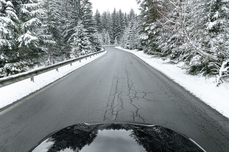 Trees Nature Snow Car High Angle View Winter Tree Road Close-up Empty Road vanishing point Mountain Road The Way Forward Diminishing Perspective Road Marking Snow Covered Snowcapped Treelined Asphalt