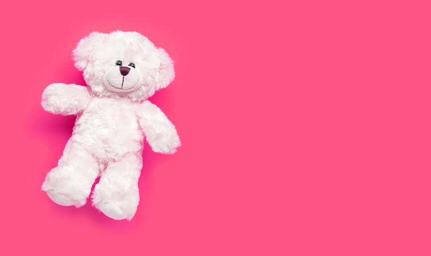 Toy white bear