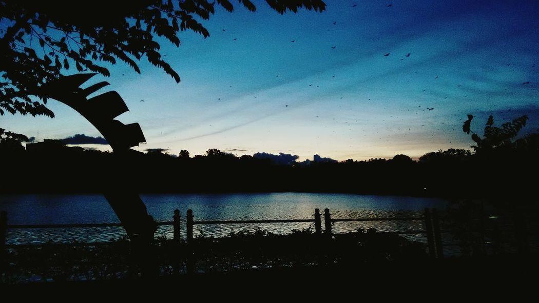 Sunset Calm Paintphotography  Landscape_photography Landscape_Collection Sunset_collection