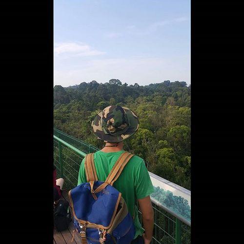 Saturday hiking at MacRitchie🚶