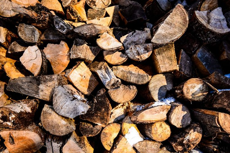 Walking in the woods Full Frame Backgrounds Large Group Of Objects Log Abundance Timber No People Firewood Wood Stack Nature Close-up Wood - Material Textured  Forest Tree Deforestation Fuel And Power Generation Heap Lumber Industry