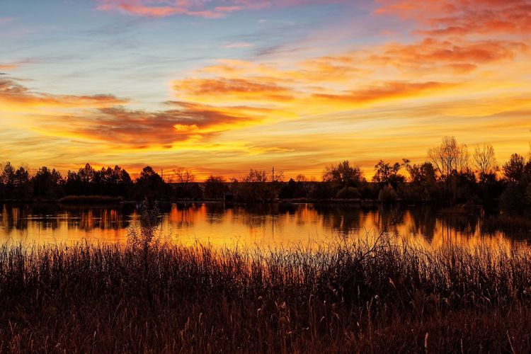 Dawn, Coot Lake, Colorado. Morning Morning Sky Nature Nature Photography Reflection Silhouette Tranquility Trees Cloud - Sky Clouds Colorful Dawn Inspiration Lake Landscape Outdoors Peaceful Reeds Scenics Sunrise Tranquil Scene Up Early Water