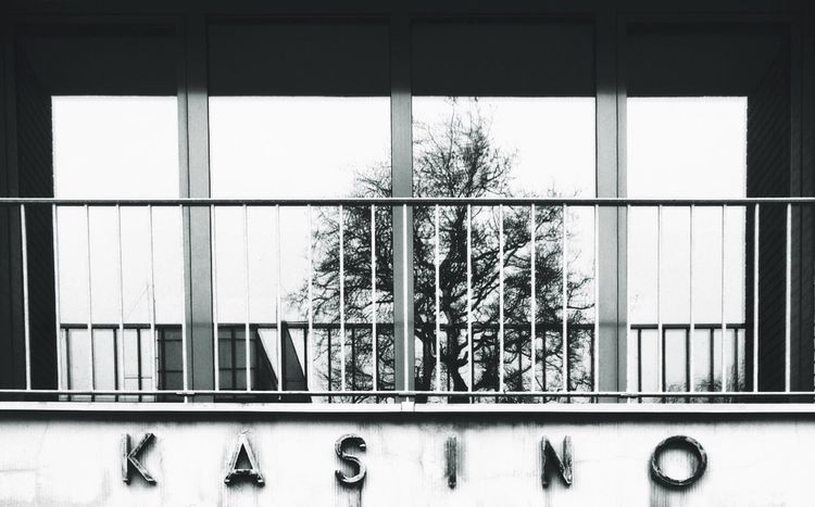 Kasino Window Reflection Showcase March Tree Black And White Letters