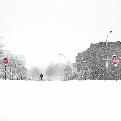 Arrêts Winter The Week Of Eyeem Montréal Colorsplash