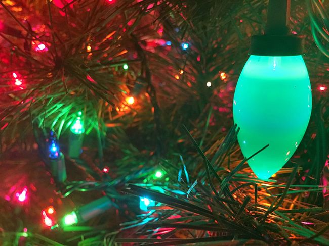 Best Christmas Lights Check This Out Christmas Tree Holidays Joy Spirit