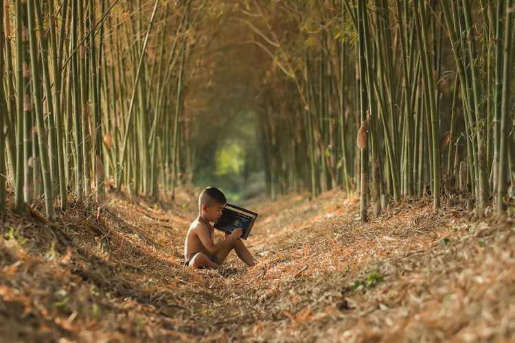 Side View Of Shirtless Boy Holding Radio Amidst Bamboos On Field