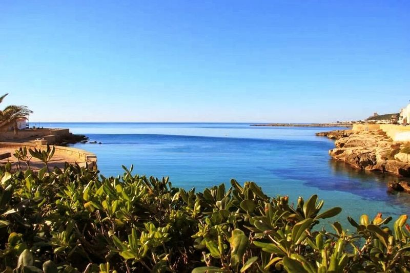 Sea Beach Clear Sky Nature Tranquility Sky Blue Travel Destinations Vacations Tranquil Scene Plant Water Landscape Sand Scenics Outdoors Horizon Over Water Palm Tree No People Beauty In Nature Salento Puglia Salento, Italy Salentoesoncontento Salentomare Salento Ionico