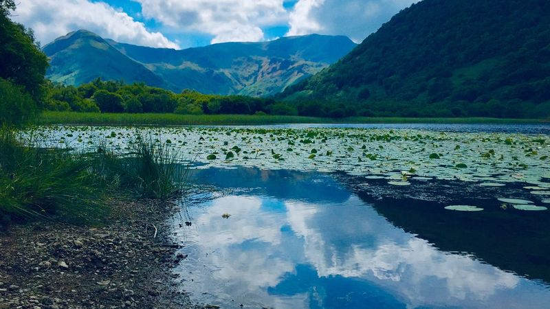 Lakeland Paradise, Brothers Water - Lake District Lake District Uk England Paradise Reflection Cloud - Sky Plant Mountain Range Sky Growth Lake Environment Day No People Tree Landscape