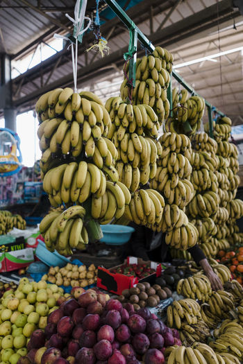 Marocco Landscape Africa North Africa Market Food Freshness Agadir Oranges Peppers Madarines Bananas Tomatoes Food And Drink Healthy Eating Fruit Choice Wellbeing Retail  Market Stall Variation Large Group Of Objects Abundance For Sale Banana No People Business Hanging Day Vegetable Retail Display Ripe Morocco Morocco Landscape