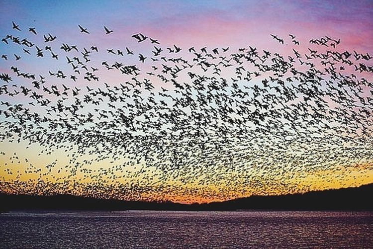 Sky Life In Color Nice природа и красота
