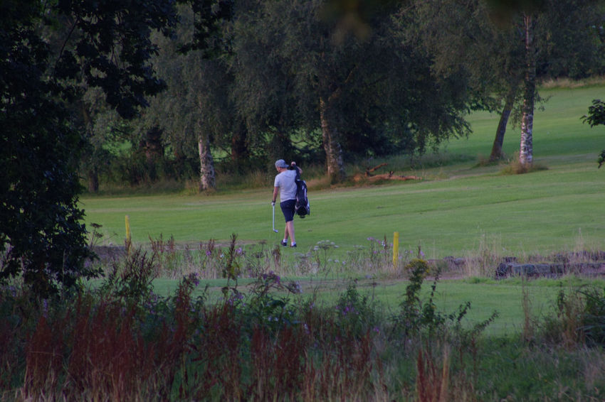 Golfer Golf Course Golf Grass Area Green Grass The Grass Is Green Tranquil Scene Tranquility Trees Rough Fairway Golf Bag Golf Club People And Places