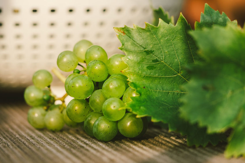 Vintage at home Food And Drink Nature Close-up Day Food Food And Drink Freshness Fruit Grapes Green Color Growth Harvesting Healthy Eating Indoors  Leaf Nature No People Table Vintage Wine