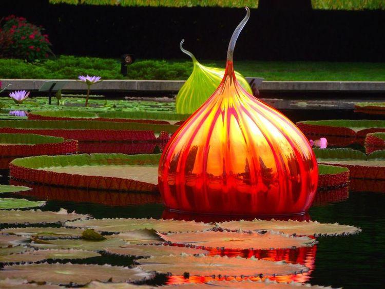 """Chihuly's Folly"" taken at St. Louis Botanical Gardens. Dale Chihuly Botanical Gardens Blown Glass"