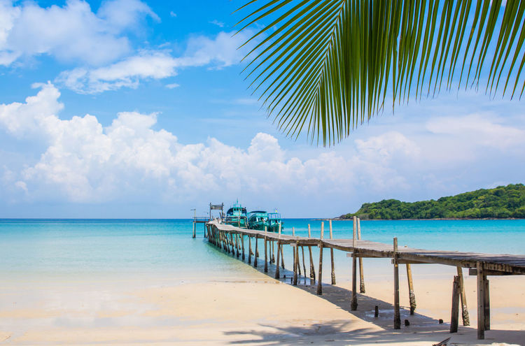 Holiday Koh Kood Thailand Beach Beauty In Nature Blue Bule Sky Cloud - Sky Day Horizon Over Water Nature No People Outdoors Palm Tree Sand Scenics Sea Sky Tranquil Scene Tranquility Tree Water