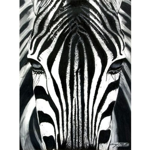 TBT  Zebra - Watercolor Painted this piece almost 10 years ago now. Caseyoneillart Torontoartist Artistlife