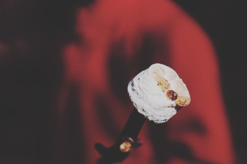 Close-up of roasted marshmallow at night