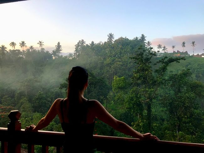 Morning Fog Bali Jungle Tree Plant Lifestyles Real People Leisure Activity Women One Person Nature Waist Up Rear View EyeEmNewHere