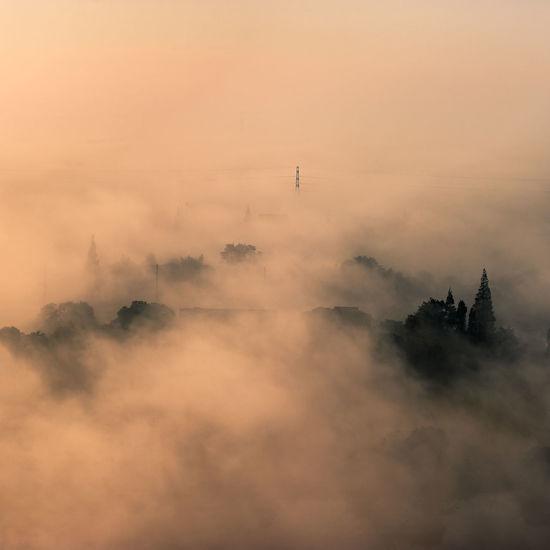 Fog Morning Dawn Landscape Nature Outdoors Tree No People Nikon Photography Jiashan Zhejiang Province
