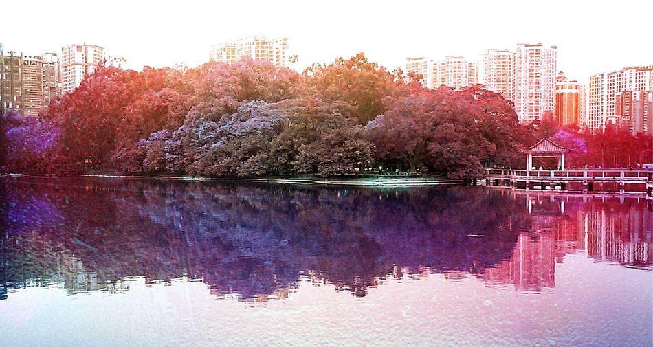 色彩 风景