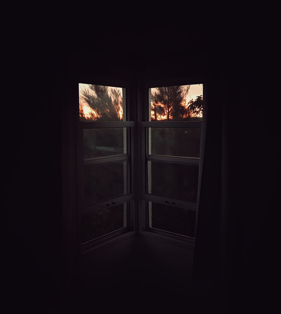 window, indoors, glass - material, transparent, no people, dark, nature, tree, day, door, closed, entrance, architecture, safety, security, open, sky, sunlight, window frame