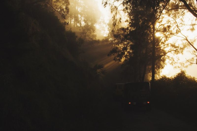 Morning ride. Sunrise Jeep Light And Shadow Morning Light