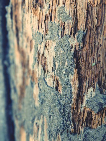 EyeEm Selects Architecture Pylon Pylons Wood Wooden Post Woodpile Rottingwood Rotting Wood Rotting Away Close Up Nomacrolens Googlepixel2xl