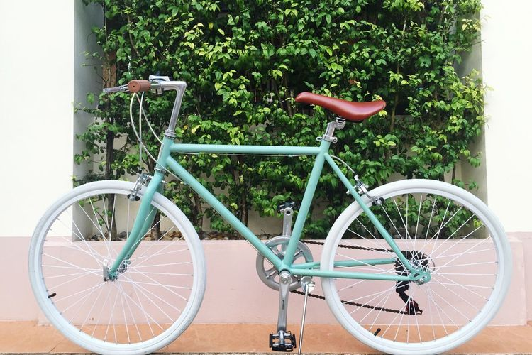 My new toy Bike Riding Hometime