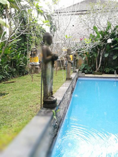 Ethnic Arca Statue Swimming Pool Tree Shadow Standing