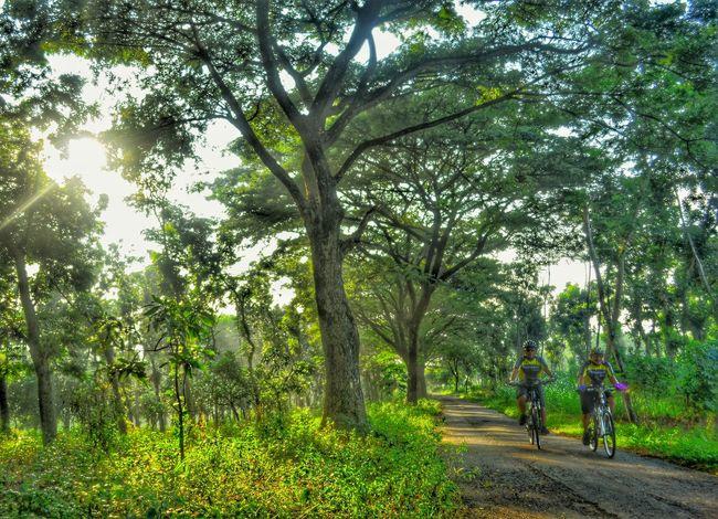 Cycling.. Hello World Nikon_indonesia Street_photo_club Nikon_photography_ Nikond7000 Iamindonesia Indonesia_photography