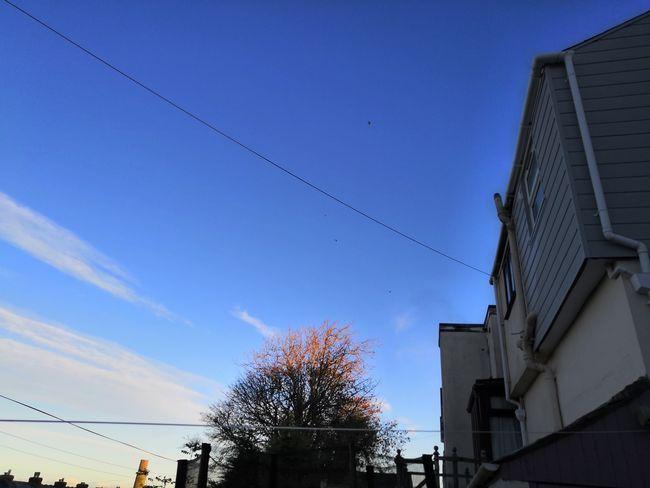 Blue Sky Architecture Building Exterior