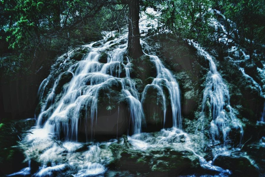 China Photos Hugging A Tree Waterfall Nature Secret Garden Darkness And Light Taking Photos Travel Editoftheday Streamzoofamily Treepark