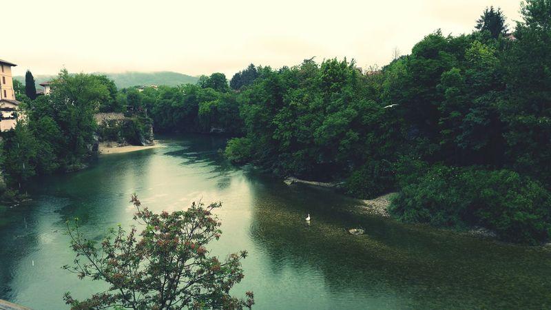 natisone piovoso con cigno contento River Natisone Cividale Del Friuli Cividale Udine Friuli Venezia Giulia