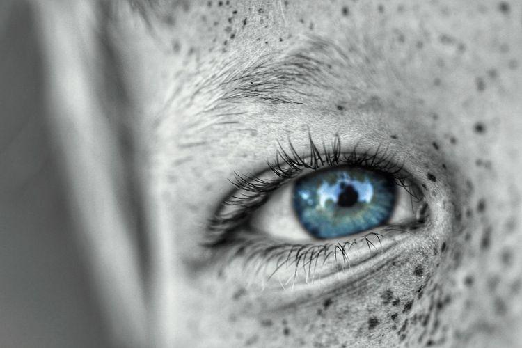 Eye Human Eye