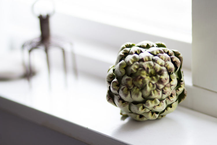 Artichoke Beauty In Nature Close-up Day Focus On Foreground Food Freshness Healthy Eating Indoors  Nature No People Plant Selective Focus Still Life Table Vegetable Wellbeing White Color Window Sill