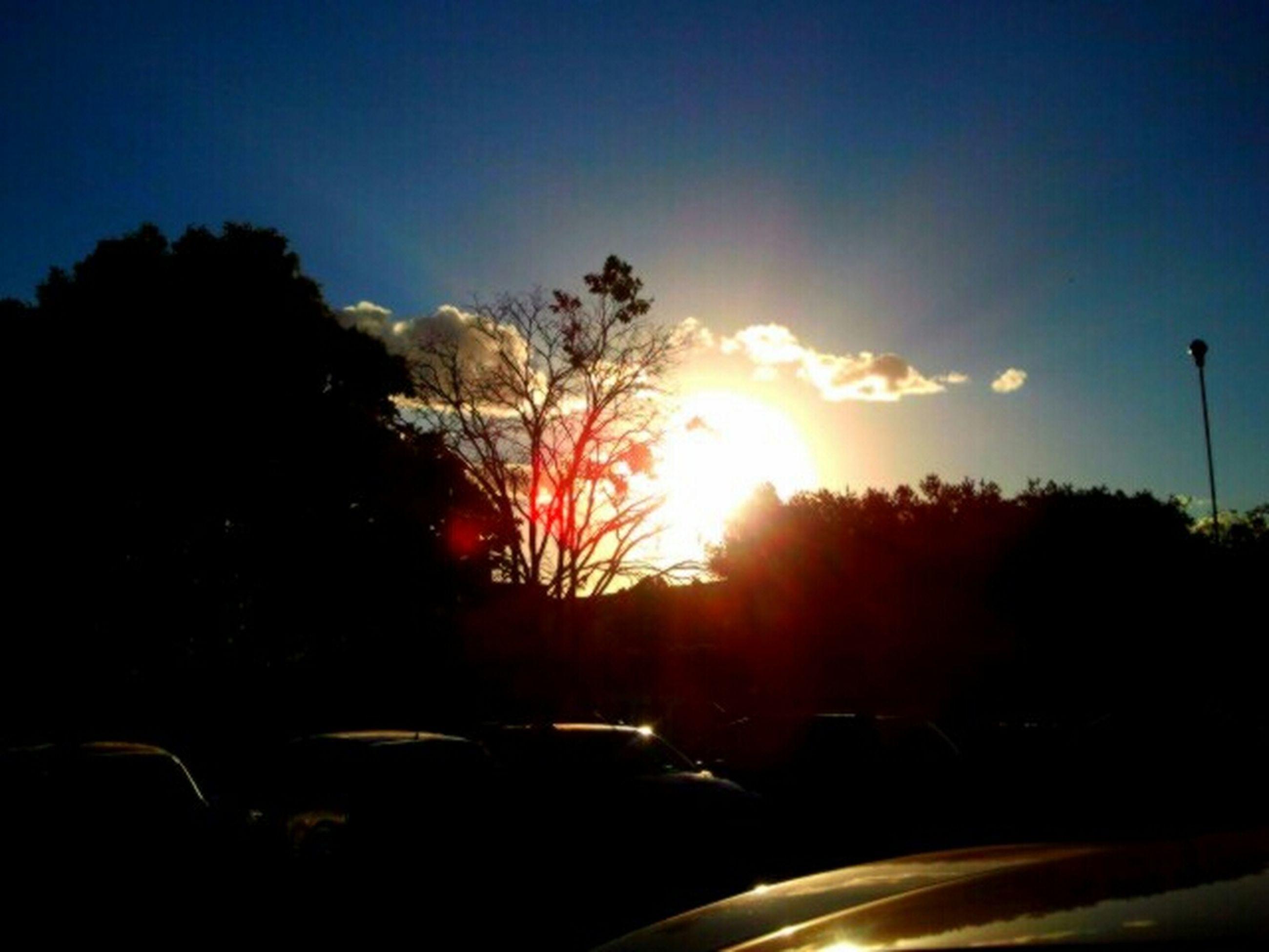 transportation, car, tree, land vehicle, sunset, road, silhouette, mode of transport, sky, sun, street, sunlight, lens flare, nature, sunbeam, street light, outdoors, no people, clear sky, traffic