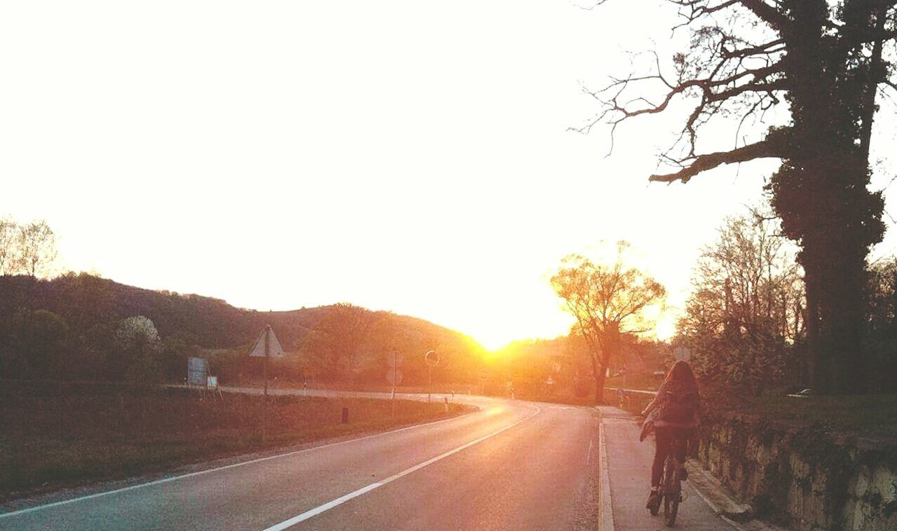 road, tree, transportation, sunset, street, silhouette, the way forward, sun, outdoors, bicycle, nature, sunlight, clear sky, sky, beauty in nature, one person, real people, day, people