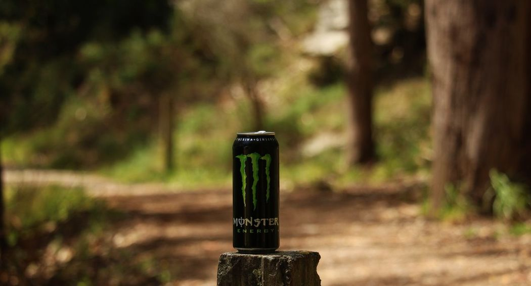 Nature Close-up Outdoors No People Focus On Foreground Popular Photos Popular Taking Photos Monster Energy Monsterenergy