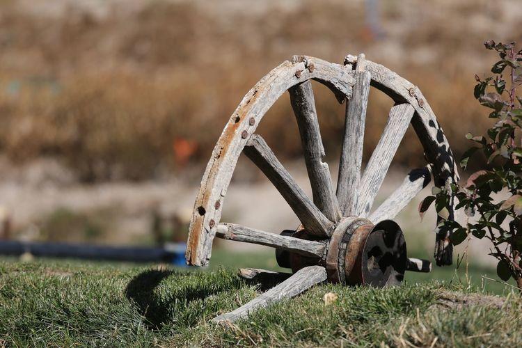Old wooden cart wheel Transportation Wagon Wheel EyeEm Selects Field Grass Wheel No People Outdoors Day Close-up