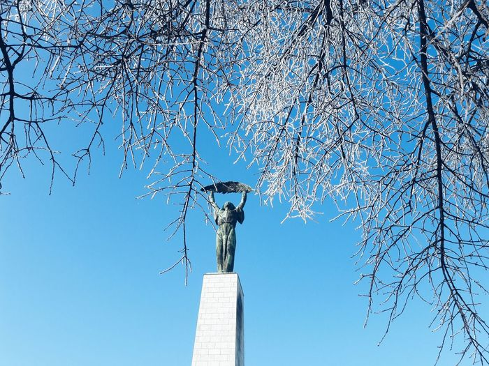 Budapest Hungary Winter Sky Outdoors Day Tree Nature Close-up No People Low Angle View Statue Of Liberty Freedom Frozen Snow Blue Sky