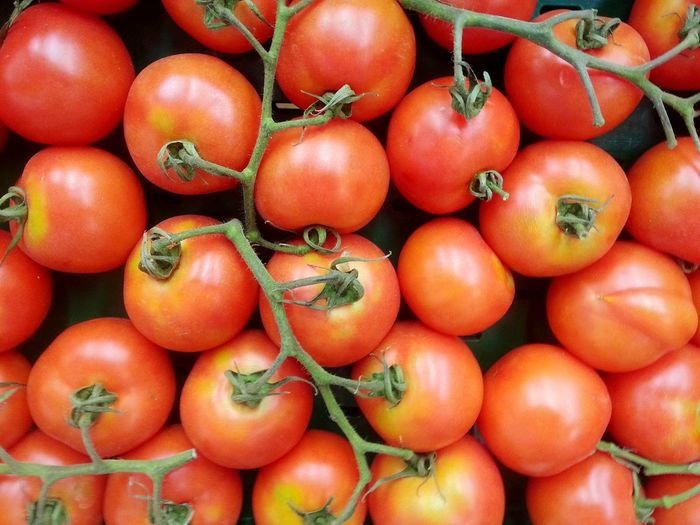 from my plants Tomato Fruit Red Full Frame Backgrounds Healthy Lifestyle Tomato Vegetable Agriculture Close-up Food And Drink Vitamin C Market Stall For Sale Retail Display