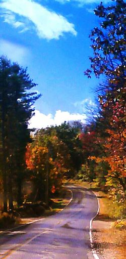 Maine Colors Of Fall Simple Life Beautiful Nature Autum Leaves.<3 WindingCountry Road