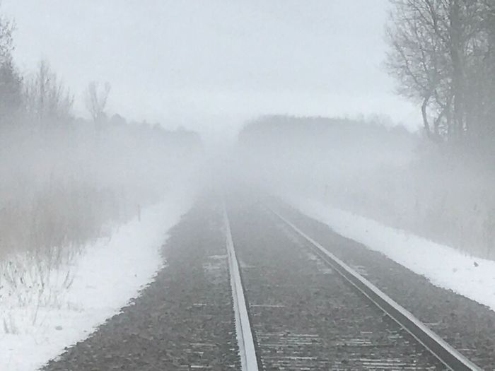 Railroad tracks amidst trees during winter